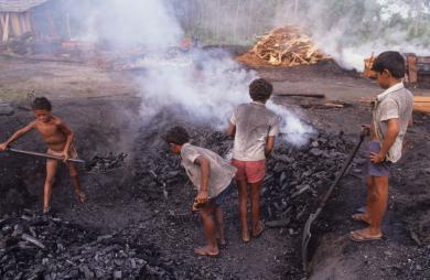 Children in Brazil involved in charcoal production Mark Edwards, Hard Rain Picture Library